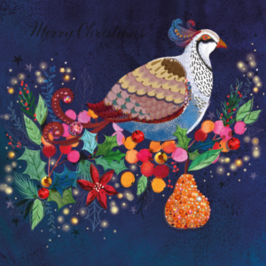Colourful Partridge Christmas Card 2021