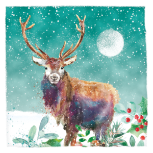 Colourful Stag Christmas Card 2021