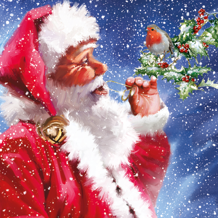 Santa and Robin Christmas Card 2021