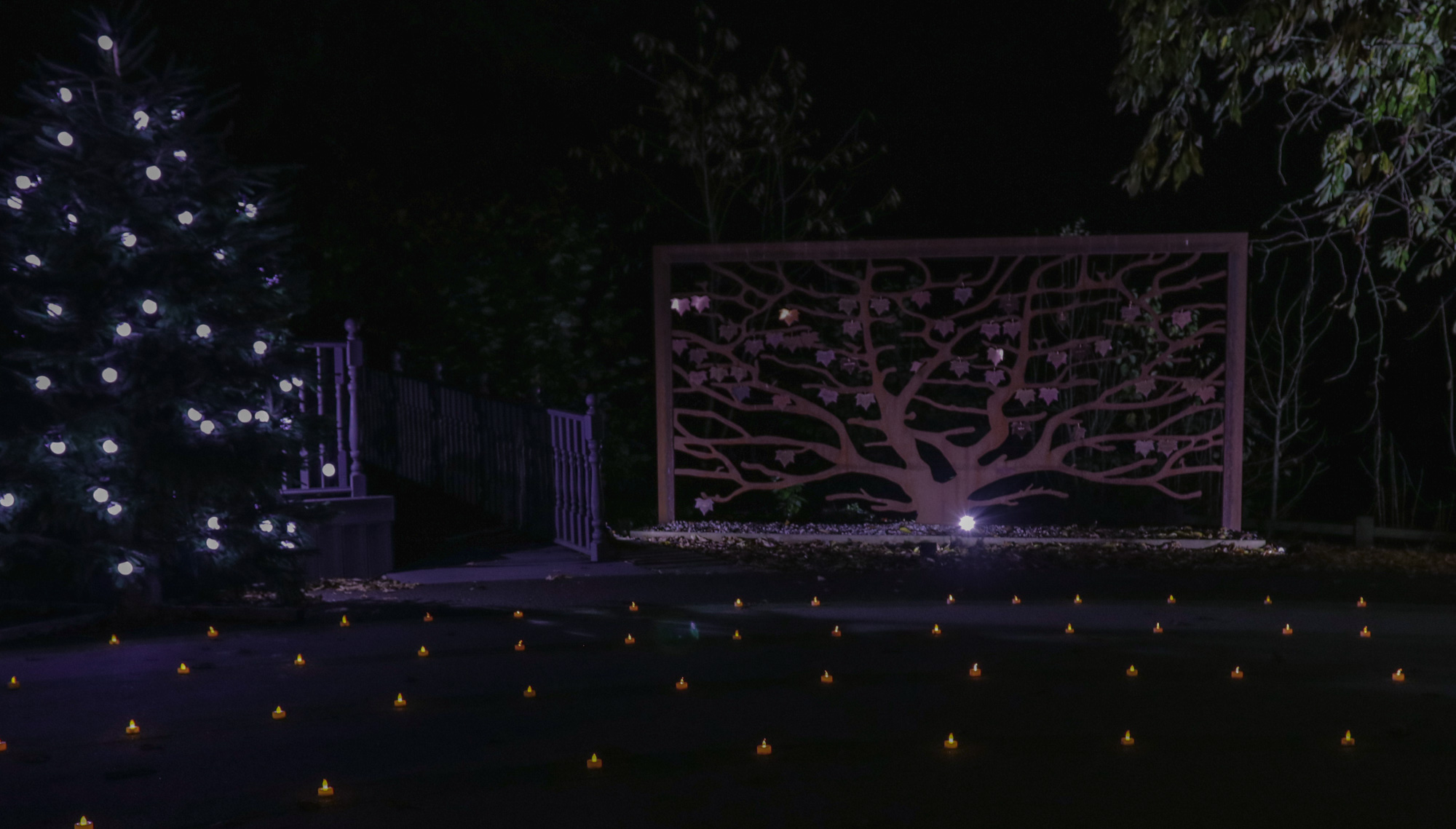 Memory Orchard in the night