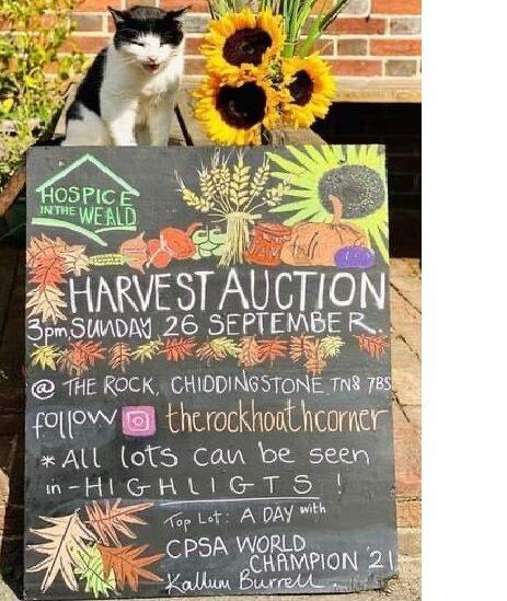 Lamberhurst Auction September